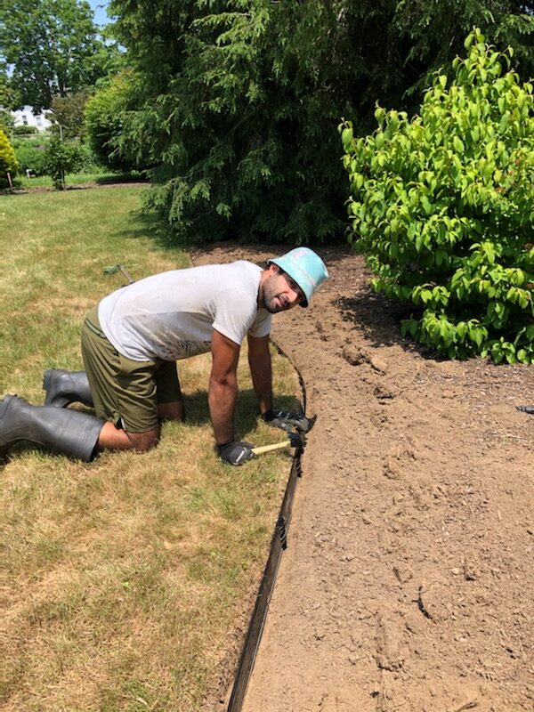 Gardener Anthony kneels on lawn in front of shrubbery bed, hammer in right hand, installing strips of black landscape edging