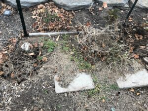 A patch of garden in October, with dead leaves, straw mulch and debris from dead flowers and arugula, chickenwire fence towards back and cement stepping stones in foreground