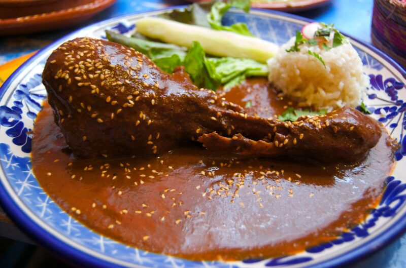 Turkey leg in mole sauce with small seeds, with small scoop of rice and a couple of indistinct greens behind it, all on a blue and white patterned plate