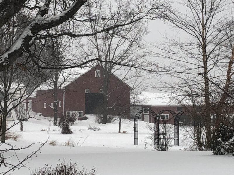Snowy scene with a large red barn and smaller red outbuilding to the right of it; bare-branched trees in mid-distance before the buildings