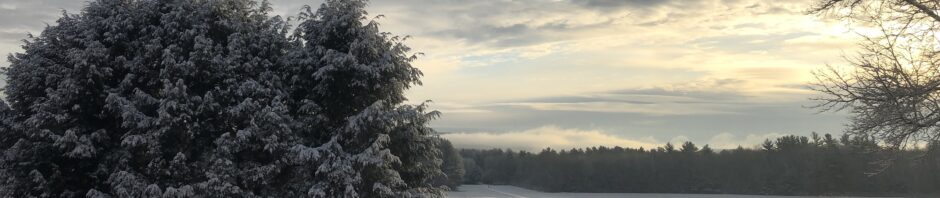 Daybreak with snowy landscape on a gray-clouded day; hemlocks framing left side, bare oak branches framing right; treeline in distance topped by mist and clouds