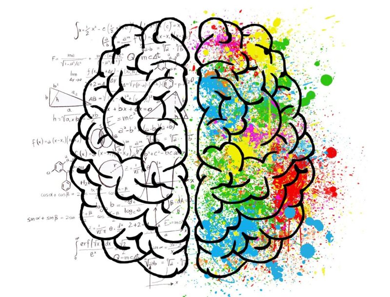 graphic representation of human brain seen from above, drawn with heavy black lines; splashes of primary paints on the right hemisphere; molecular diagrams and scientific equations underlying the left hemisphere