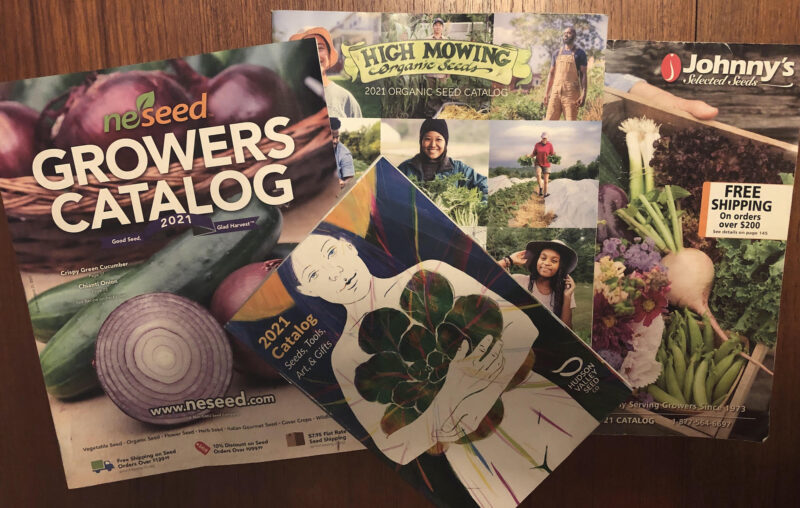 Montage of seed catalog covers: Johnny's Selected Seeds, High Mowing Organic Seeds, NESeed Growers Catalog, Hudson Valley Seed, shown atop a woodgrain background