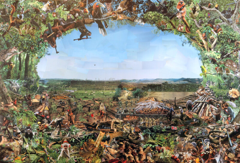 """A collage made of clippings from National Geographic. For the best description of the picture, use the link on the title """"Deforestation"""" in the caption"""